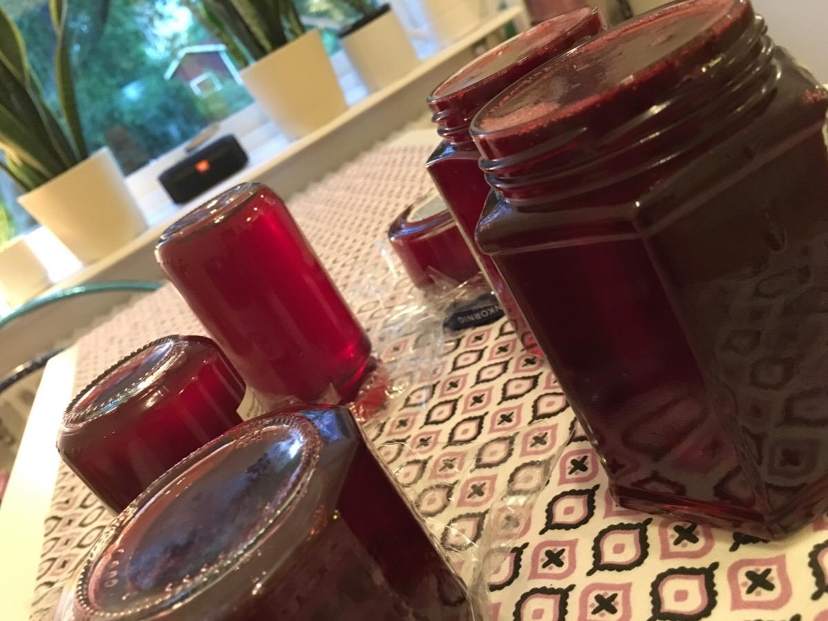 Vinbärsgelé