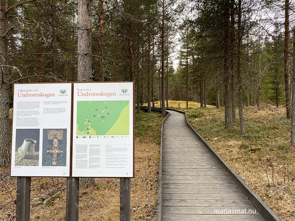 Utflykt till Undromskogen, Rödön