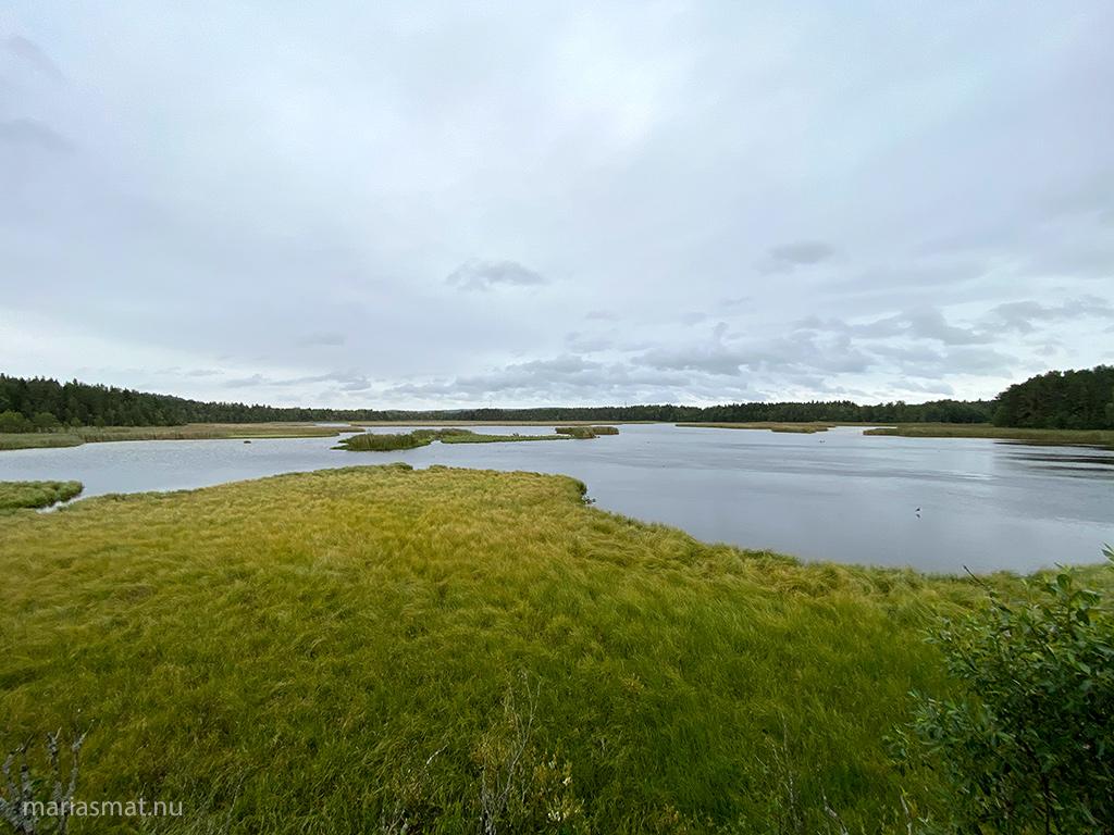 Promenad runt Ändsjön